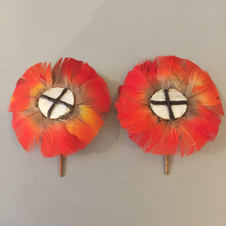 A Shambioá pair of man's ear plugs